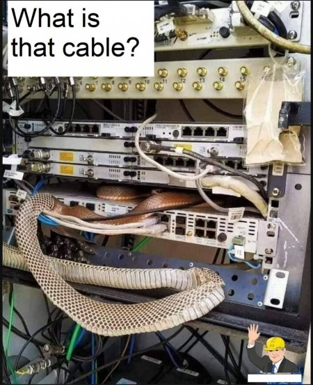 What cable?.jpg