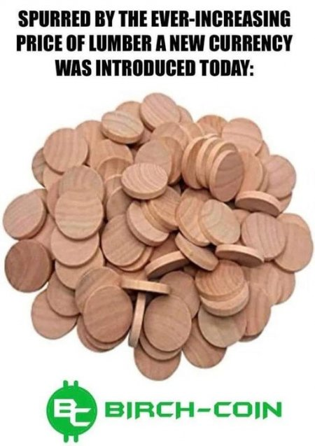 birch-coin.jpg